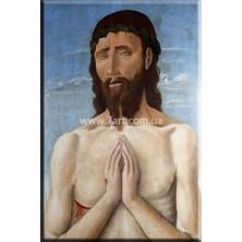Репродукции картин, Art. KLS777041